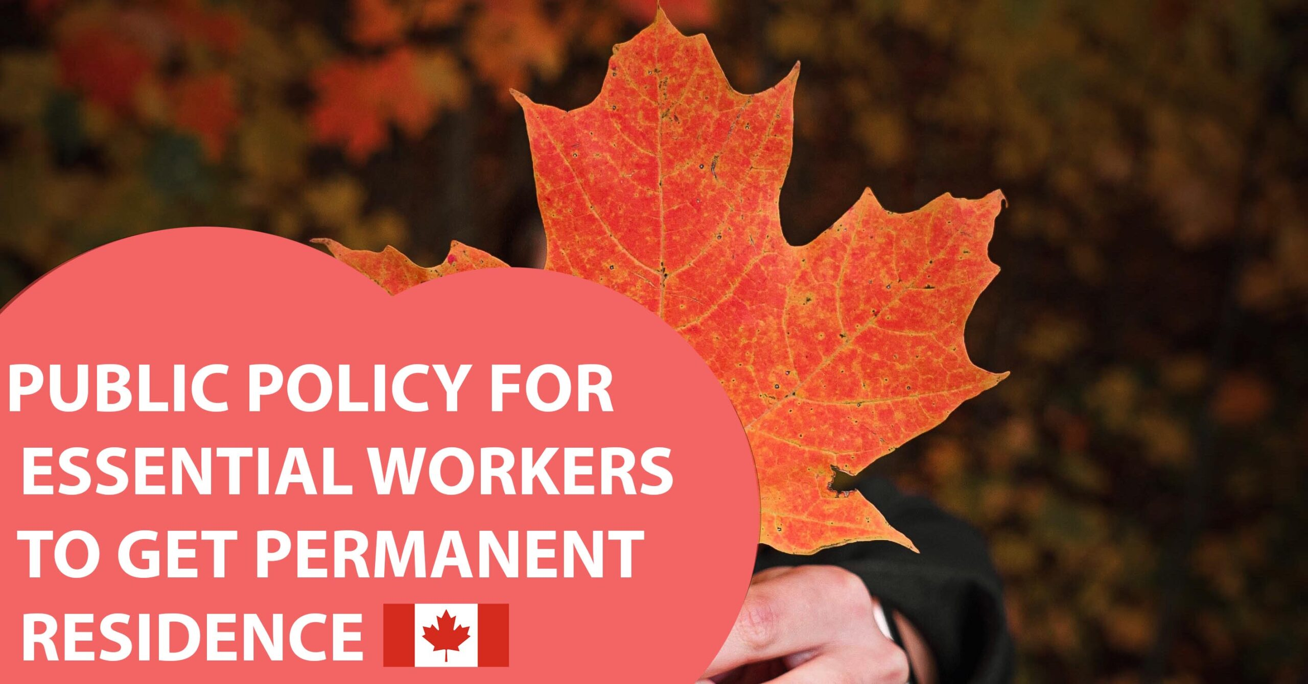 PUBLIC POLICY FOR ESSENTIAL WORKERS TO GET PERMANENT RESIDENCE (OPENING ON MAY 6TH )