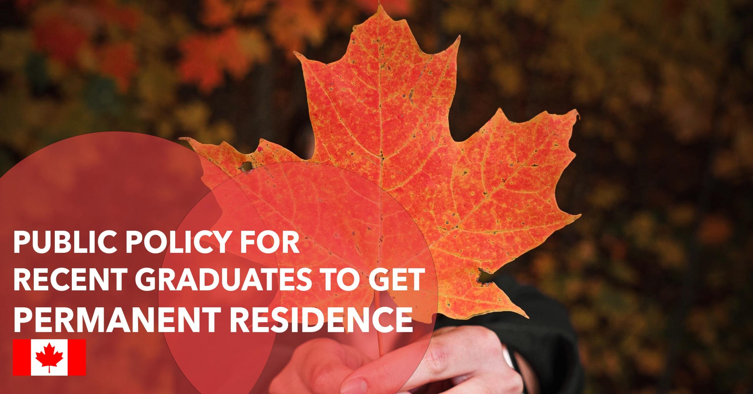 PUBLIC POLICY FOR RECENT GRADUATES TO GET PERMANENT RESIDENCE